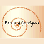 logotype du site de benard garrigues