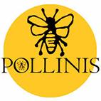 logotype du site pollinis